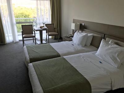 スペイン中東430アテネアマリアホテル