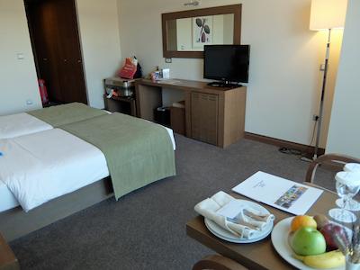スペイン中東431アテネアマリアホテル