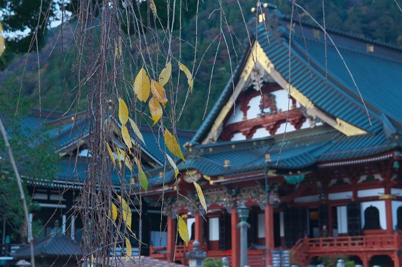 晩秋の久遠寺