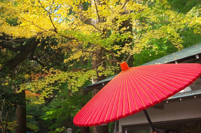 油山寺の秋 2