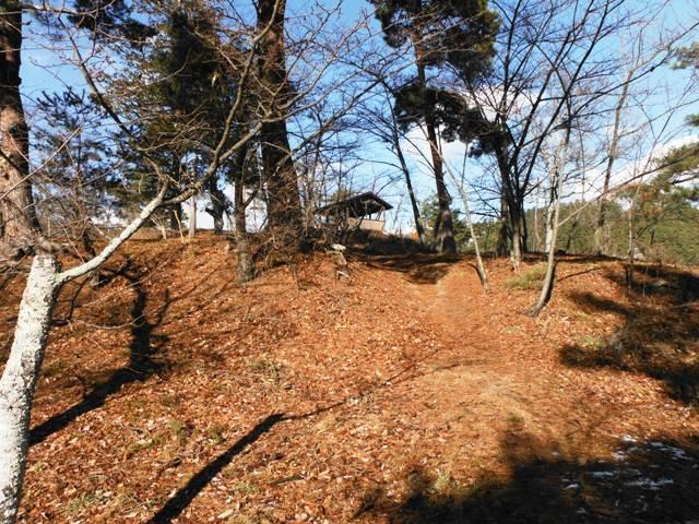 戸石城2013 (136)