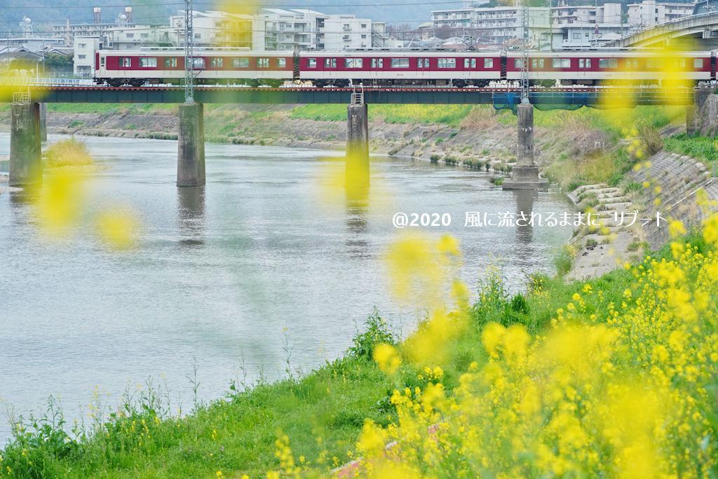 奈良・三郷町 菜の花と近鉄電車1