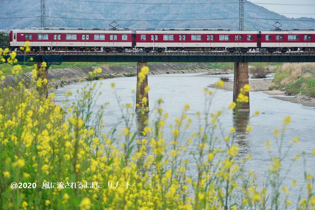 奈良・三郷町 菜の花と近鉄電車2
