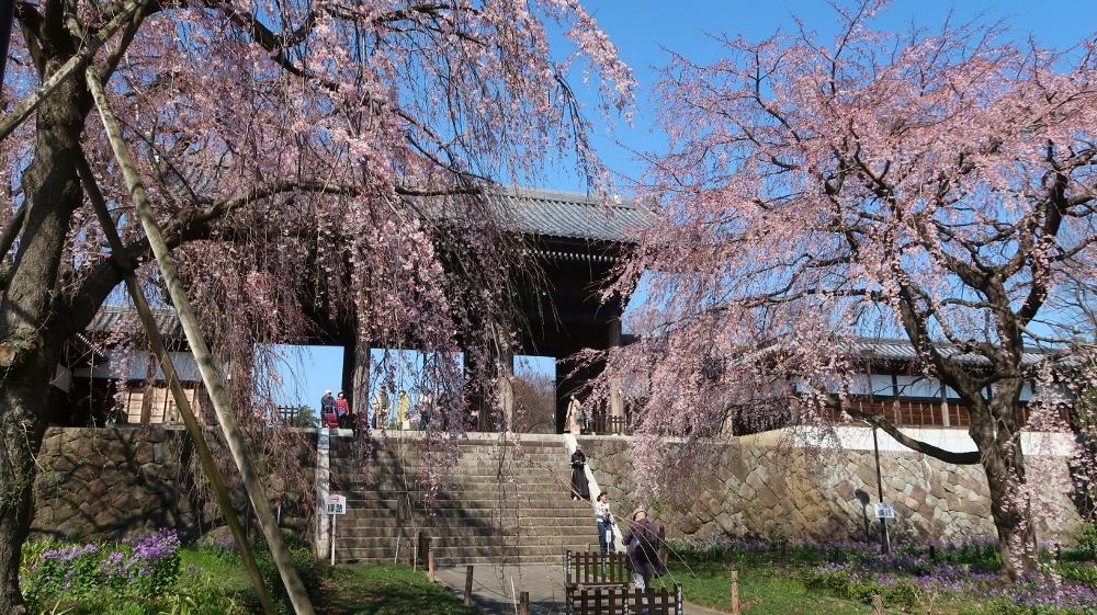09東郷寺 (1000x561)