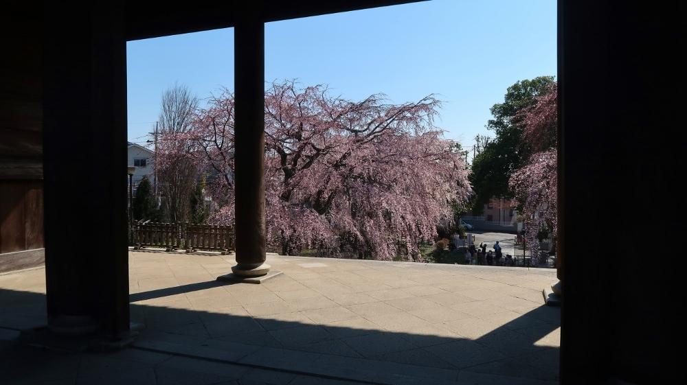 11東郷寺 (1000x561)