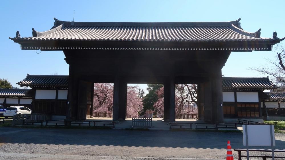 12東郷寺 (1000x561)