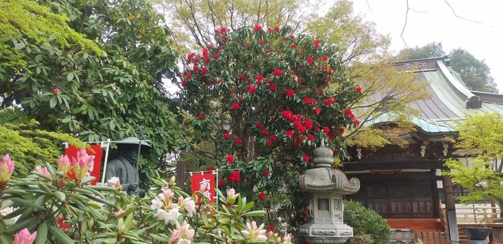 2020-03-31高蔵寺 031 (1000x486)