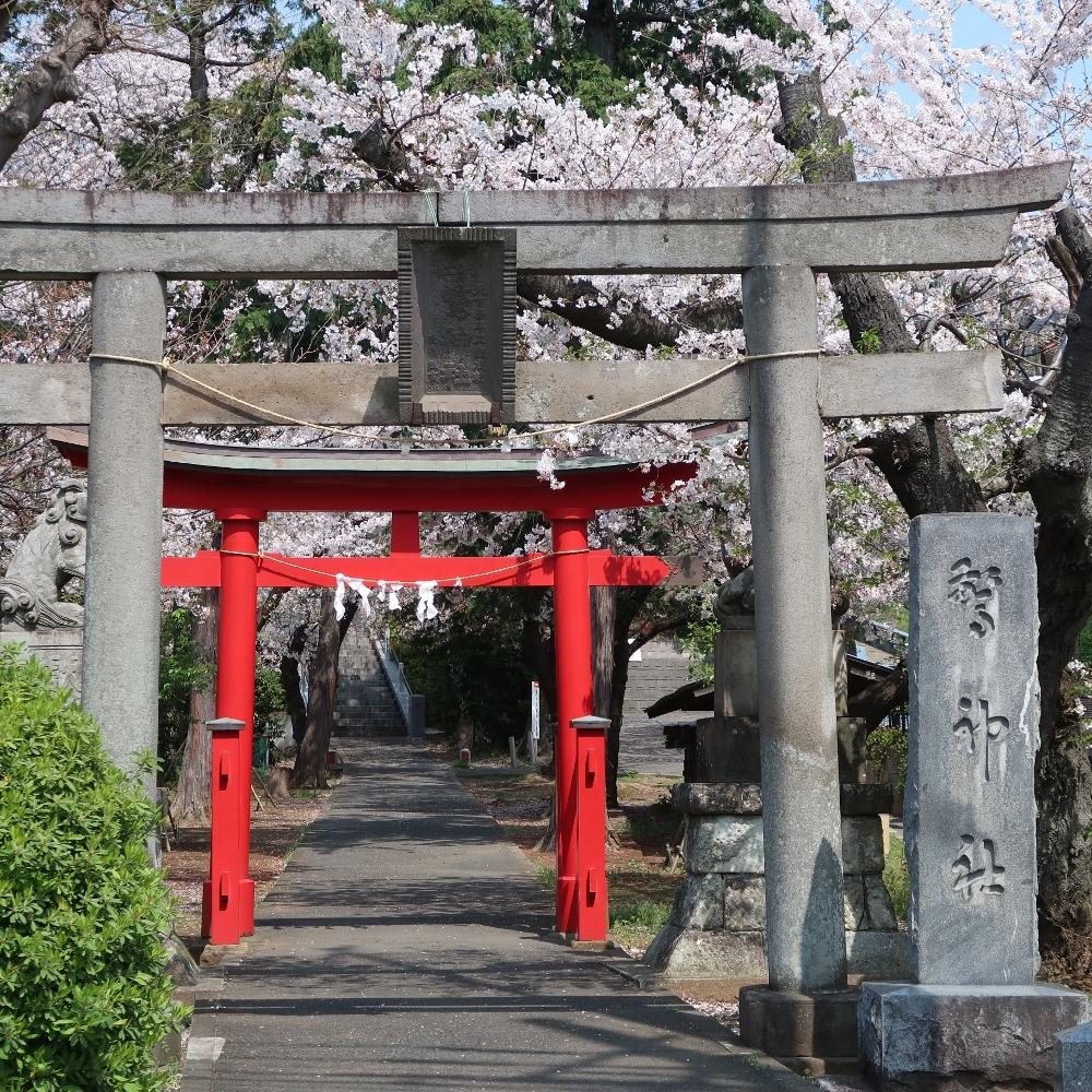 驚神社 (1000x1000)