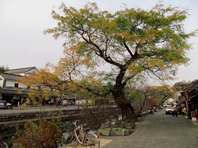 20121205倉敷 (640x480)