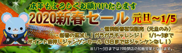 202001nenshi_banner680-thumbnail2.jpg