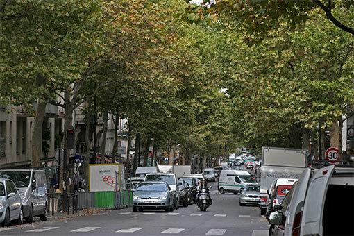 サントゥアン大通りの覆いかぶさる並木の道