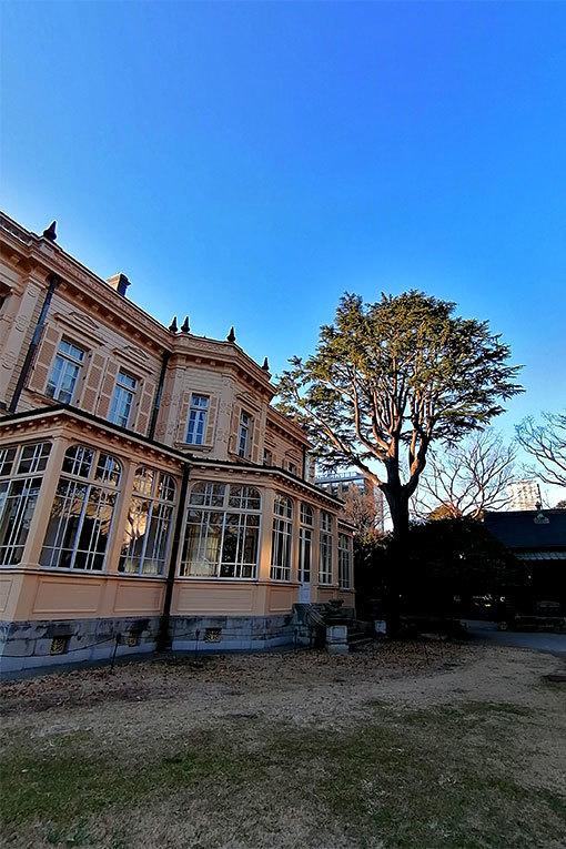 旧岩崎邸の庭園 邸宅と高い木
