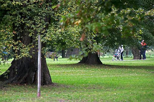 ヴロツワフ クレチンスキ公園の風景