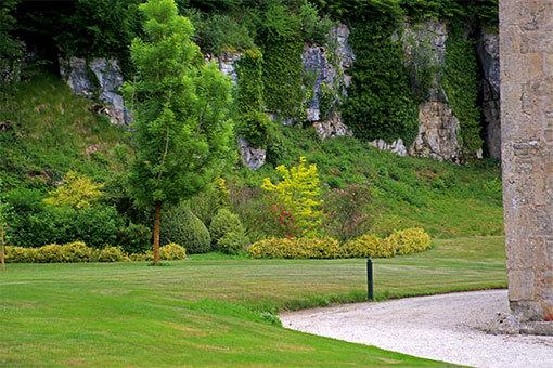和風な植栽 フォントネー修道院の庭園