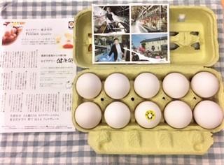 20191016セイアグリー健康卵