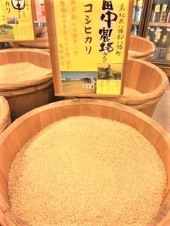 20200406田中農場コシヒカリ