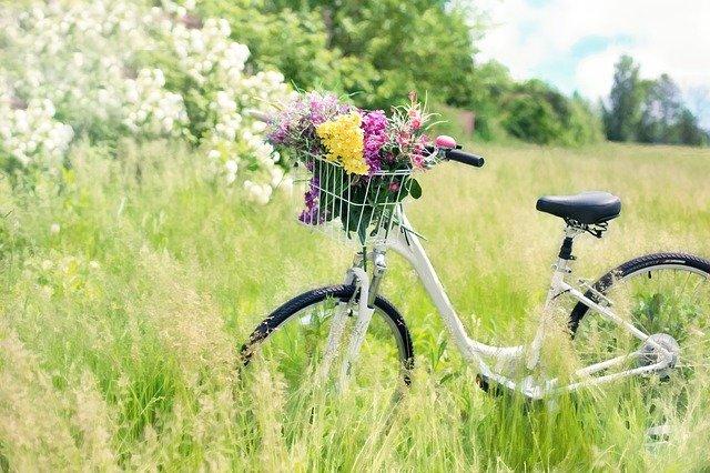 bicycle-788733_640.jpg