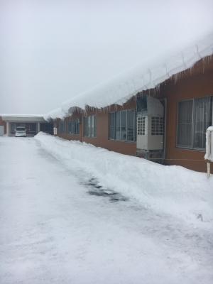 020211降雪1