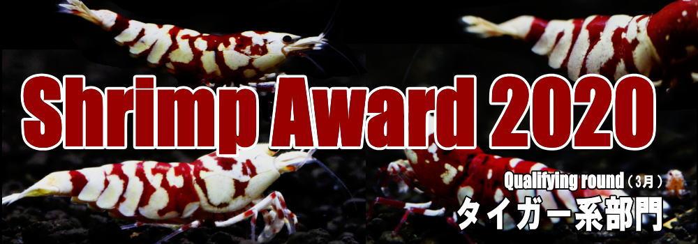 award2020tiger.jpg