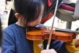 30バイオリン (6)