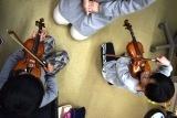30バイオリン (20)