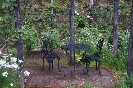 20200503 雨の庭①