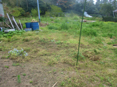 200411空き地も草刈り1