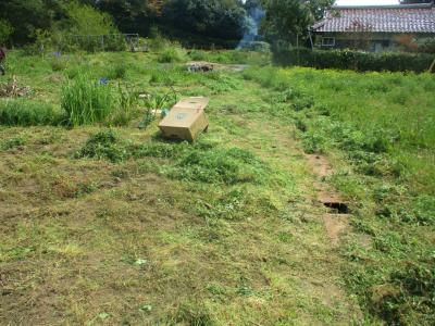 200411空き地も草刈り2
