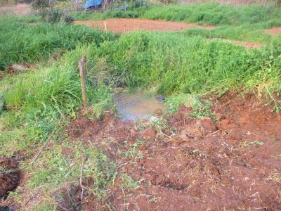 200415池の埋め立て1