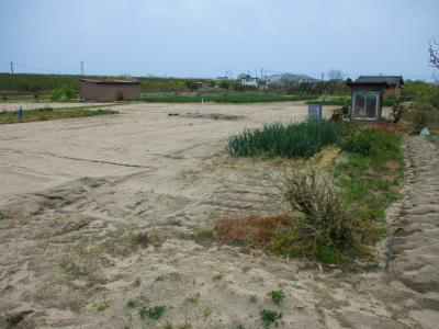 200417安来の畑2