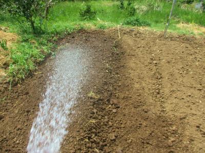 200504畝に放水
