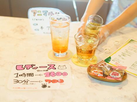札幌コンセプトカフェバー-3