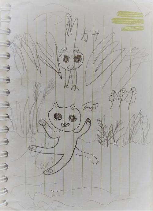 DSC_cat001.jpg