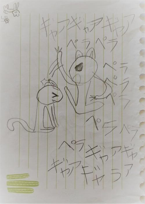 DSC_cat002.jpg