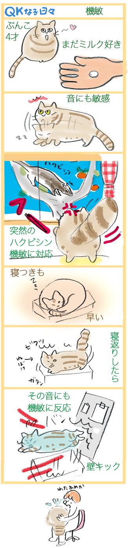 qk manga23