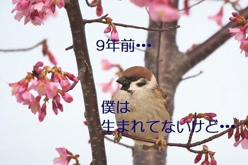 010_202003112329321c3.jpg
