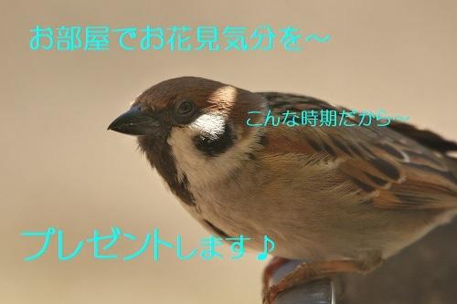 020_202003192138361e2.jpg