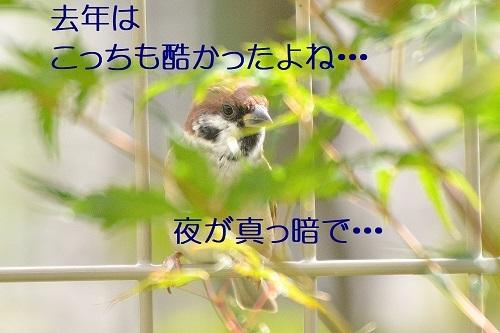 030_20191013221037c10.jpg
