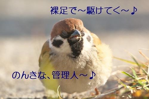 030_2020020122573193d.jpg
