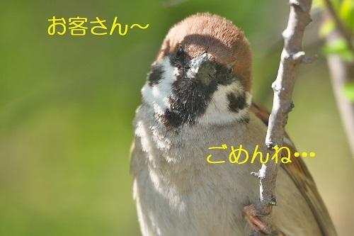 030_20200424000055f61.jpg