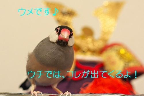 030_20200505173616307.jpg