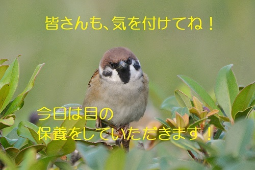 040_201911112342049c4.jpg