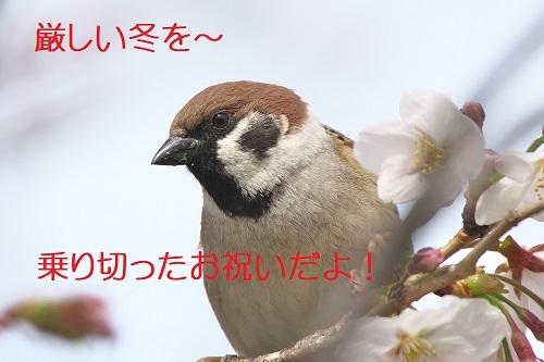 050_20200331211200c09.jpg
