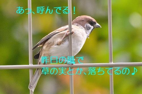 060_20191013221040de4.jpg