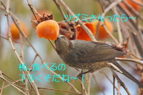 090_20200220221419aa4.jpg