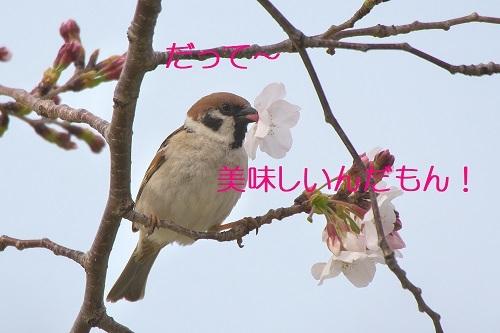 090_2020033121120336f.jpg