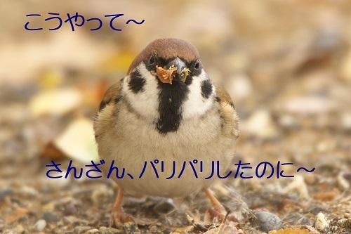 100_2020011621100348b.jpg