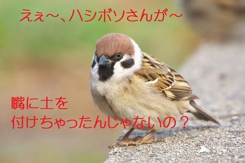 100_20200210215341ae1.jpg