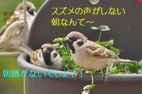 110_2020011821465551d.jpg