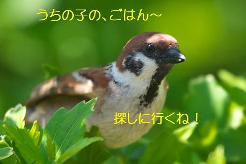 130_2020051322090884c.jpg